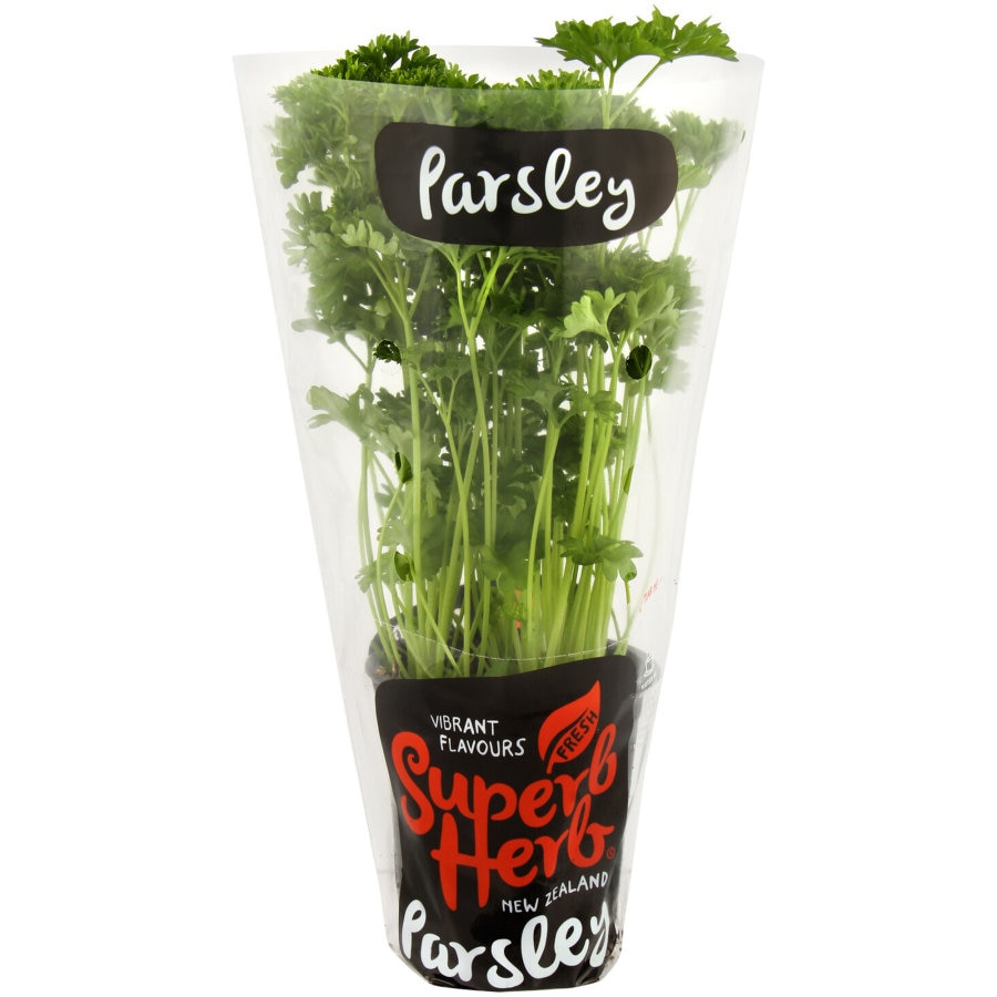 Superb Herb Parsley Living Plant each - buy online at countdown.co.nz